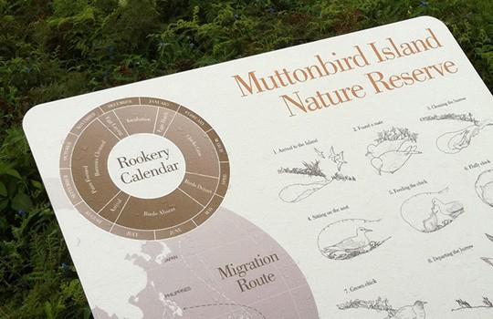 muttonbird-NR-540