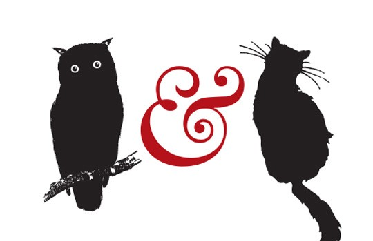 owl-pussycat-540
